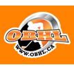 Orillia Ball Hockey League Logo