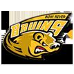 Bow River Bruins Hockey Association Logo